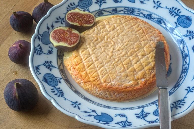 انواع پنیر 2
