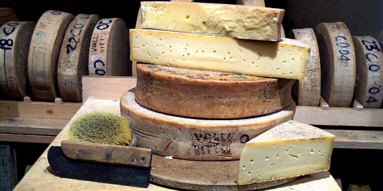 پنیر 3
